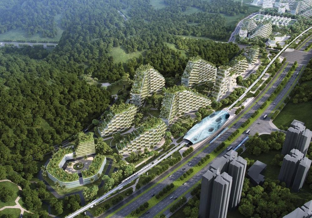 Город Лес Китай